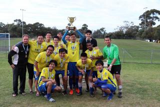 VIFA Cup 2017